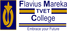 Flavius Mareka TVET College Application Status