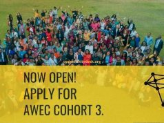 African Women Entrepreneurship Cooperative (AWEC) Program 2020 for Female Founders