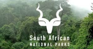 South African National Parks Internship Programme 2020