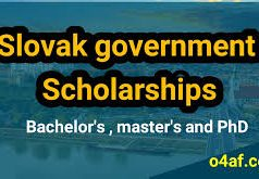 Slovak Government Scholarships 2020/2021 for International Students