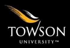 Towson University International Student Scholarship 2020/2021