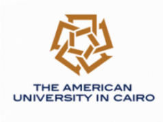 American University International Fellowship 2020/2021